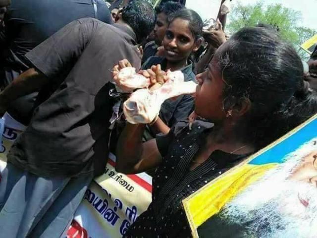 woman fake image eating beef of bone