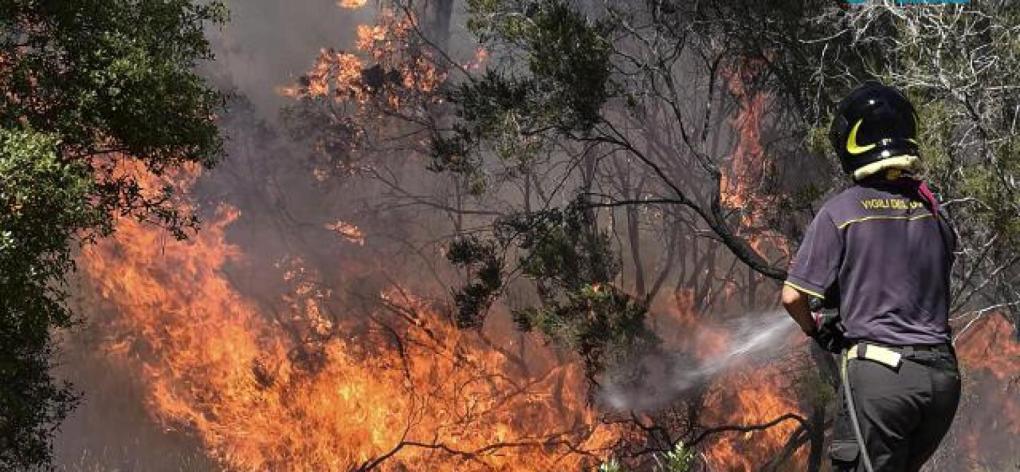 Incendi di sterpaglie anche  nel comune di capannori
