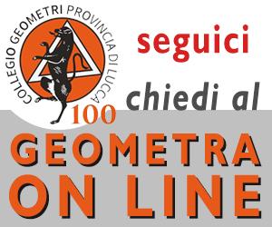 Banner Geometra Online