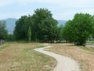 Parco Micheloni