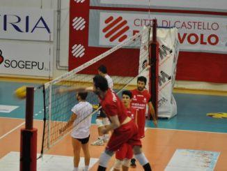 Gherardi Cartoedit Città di Castello supera Volley Isernia