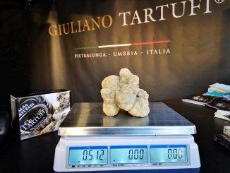 Pietralunga, concluso il primo weekend della mostra mercato del tartufo