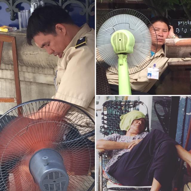 napping-vietnamese