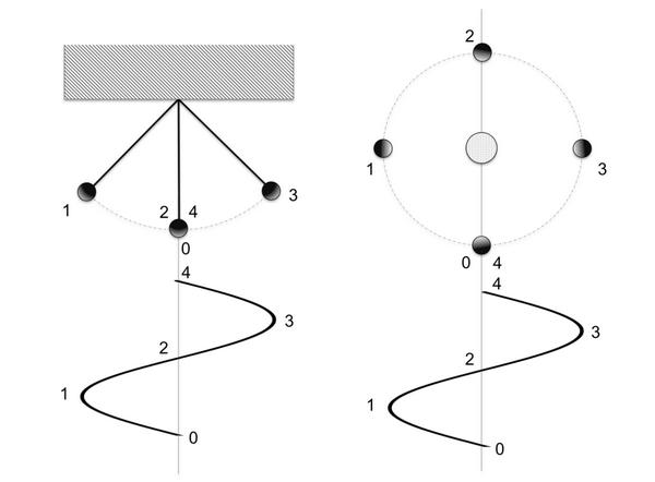 Fig. 2 - moti - ciclicità