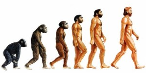 evrim-maymun-insan