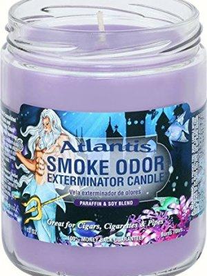 Smoke Odor 13oz Candle Atlantis