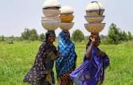 Tarihin Fulani a Kasar Kano