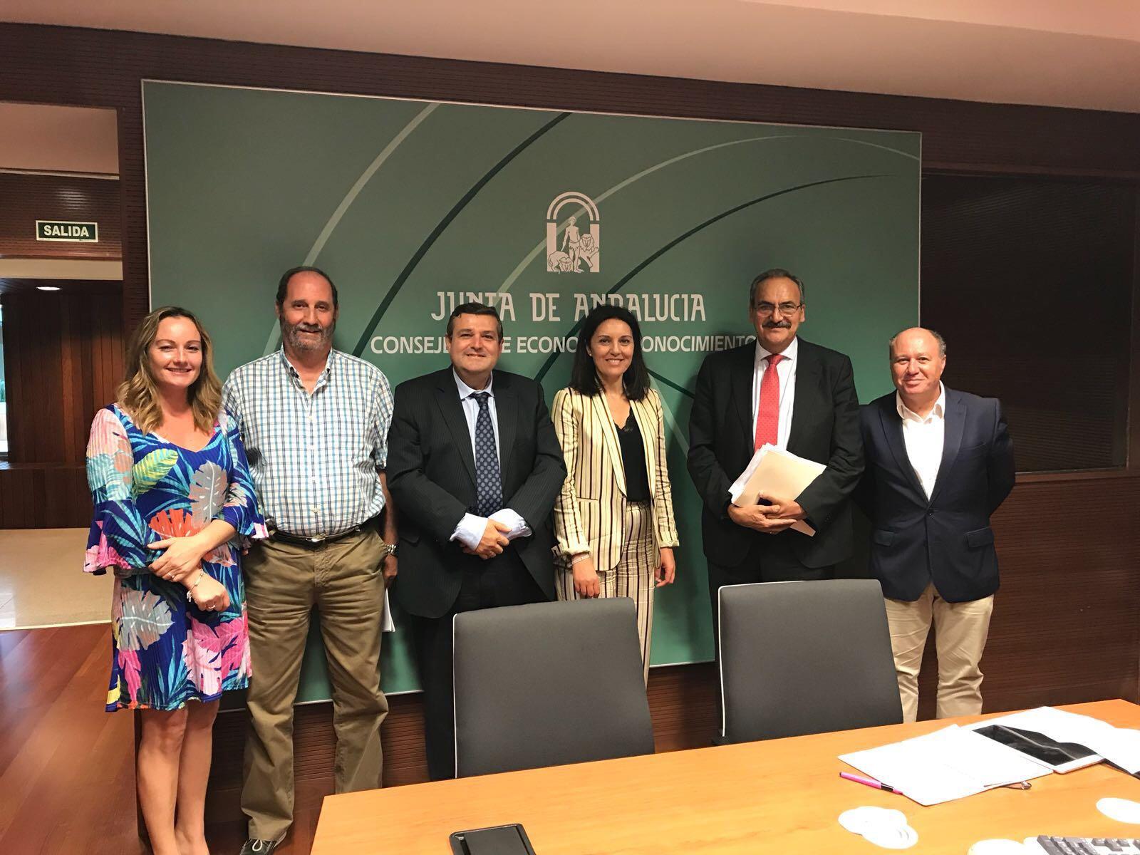 Consejos Sociales Andalucia 2017-10-10