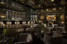 Cigar Lounge Bar Luxury