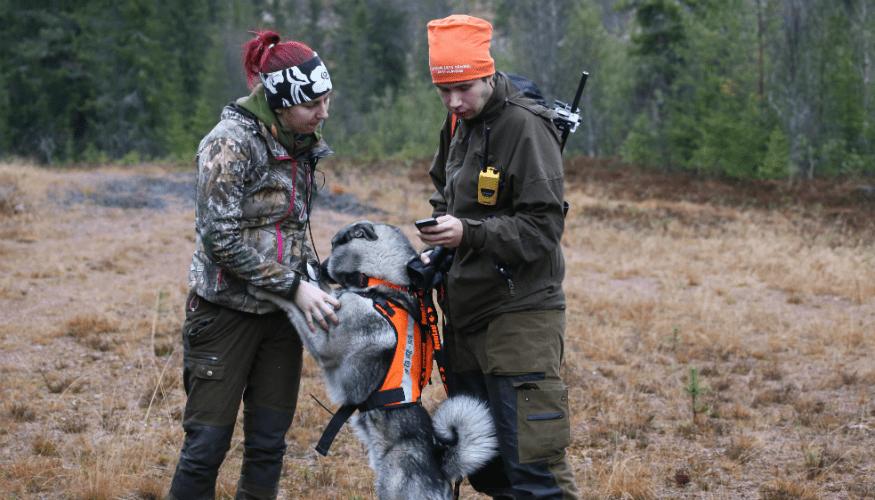 Jaktläger 2020