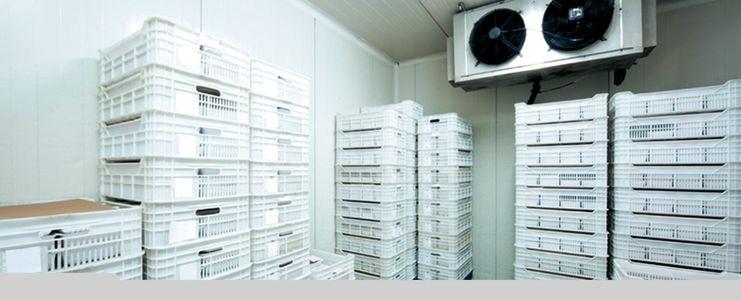 Refrigerant-Leak-Detection