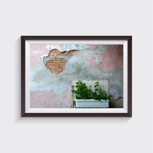 urban nature photography fine art shop prints alvise busetto