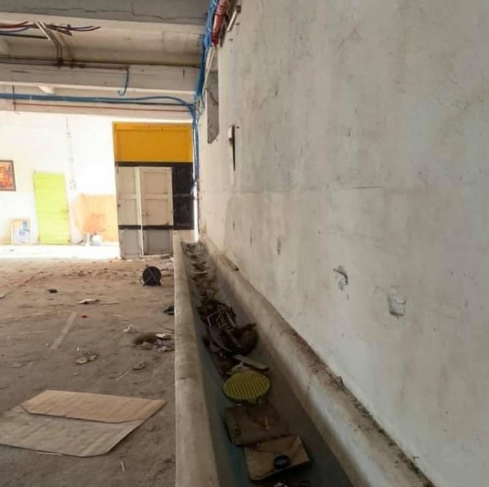 ALVITPLAQUISTE-Chantier-Renovation-complete-Mas-Chabry-Placo-Joints-Jointeur-11