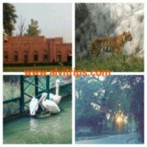 कानपुर के दर्शनीय स्थल के सुंदर दृश्य