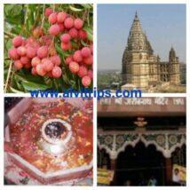 मुजफ्फरपुर के दर्शनीय स्थल – मुजफ्फरपुर के टॉप 8 पर्यटन, धार्मिक, ऐतिहासिक स्थल
