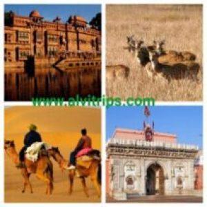 बीकानेर के पर्यटन स्थलों के सुंदर दृश्य