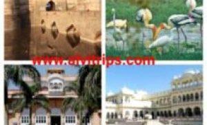 भरतपुर पर्यटन स्थल -भरतपुर के टॉप 8 टूरिस्ट प्लेस
