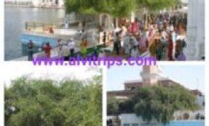दुख भंजनी बेरी साहिब – Gurudwara Dukhbhajni beri sahib
