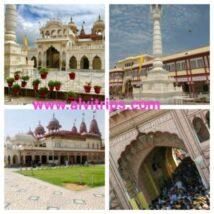 श्री महावीरजी टेम्पल राजस्थान – महावीरजी का इतिहास