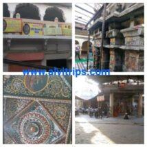 डिग्गी कल्याण जी मंदिर के सुंदर दृश्य