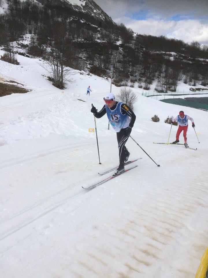 Sverige tog fyra em medaljer