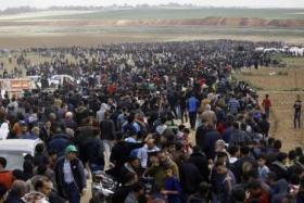 """""""بتسيلم"""" تناشد الأمم المتحدة لحماية المتظاهرين بغزة"""