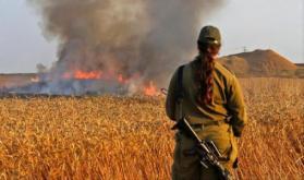 مسؤول إسرائيلي: وقف إطلاق النار في غزة خطأً كبيرًا
