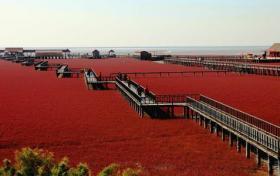 بحيرة عمرها 500 مليون عام يتحول لونها سنوياً إلى الأحمر !