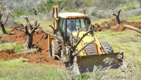 وزارة الزراعة بغزة : لن نسمح أن يكون القطاع مكبًا لنفايات الاحتلال