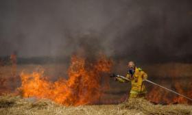 إعلان وظائف رجال إطفاء في الغلاف خوفا من عودة الحرائق