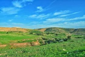 جانب من جمال الطبيعة الخلابة في الأغوار الشمالية شرق طوباس