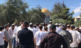 مئات المستوطنين يجددون اقتحاماتهم للأقصى بحماية قوات الاحتلال