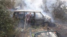 الحرائق تلتهم 50 شجرة زيتون في جنين