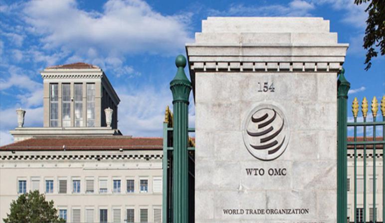 لأول مرة.. منظمة التجارة العالمية تترأسها امرأة