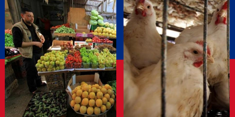 أسعار الفواكه والخضروات والدجاج واللحوم في أسواق غزة