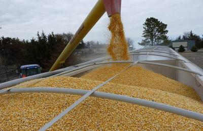 روسيا تحافظ على الريادة في صادرات الحبوب