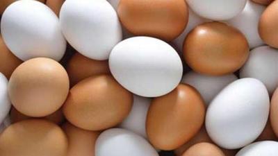 لماذا هناك بيض أبيض وآخر بني؟