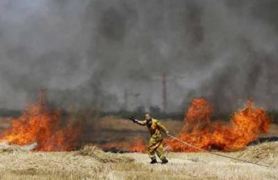 وسائل إعلام عبرية: أنباء عن اندلاع حرائق في غلاف غزة