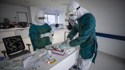 صحة غزة: تسجيل 6 حالات وفاة و240 إصابة بفيروس كورونا و800 حالة تعافي