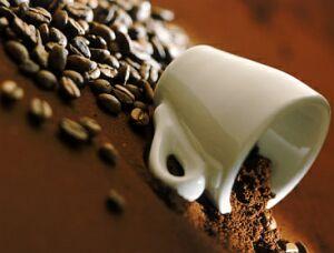 coffee and fungus