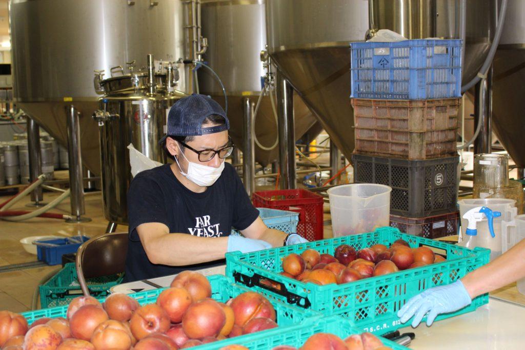 Far Yeast Brewing「Far Yeast Peach Session」