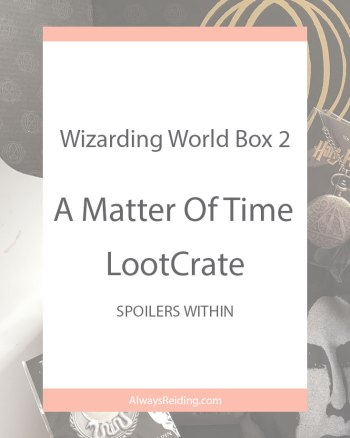 Wizarding World of Harry Potter A Matter of Time Box Review