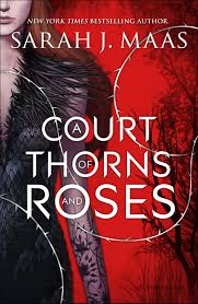 At Court: A Review of Sarah J. Maas' A Court of Thorns and Roses