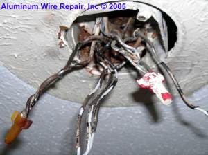 Burned Purple Wirenuts Found in the Field  Aluminum Wire Repair, Inc