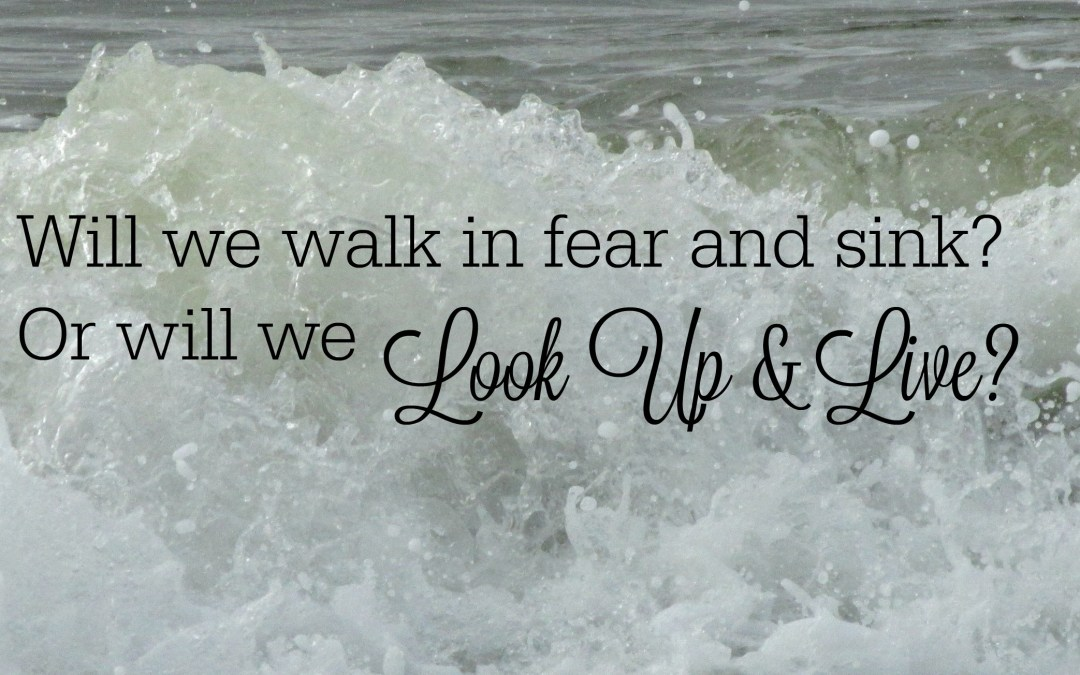When You Walk in Fear, Look Up and Live