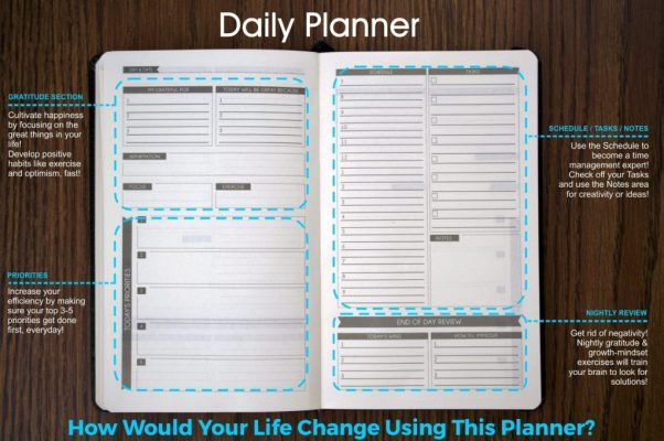 Daily Section of Panda Planner
