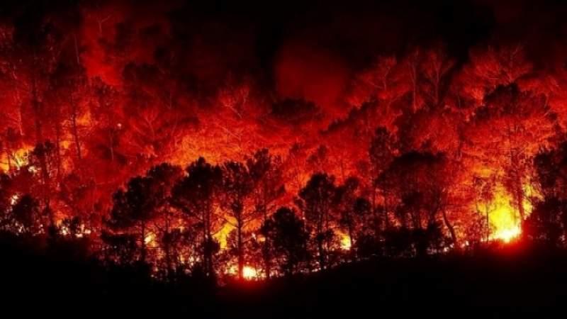 أمريكا.. حرائق كولورادو ما زالت مشتعلة منذ أغسطس