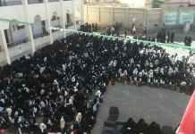 محافظة عمران تواصل احتفالاتتها