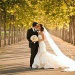 Multimoon or the perfect honeymoon