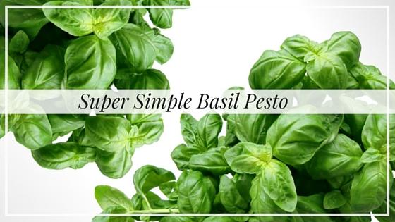 Super Simple Basil Pesto, Alyssa Coleman, wellness, productivity, creative entrepreneur